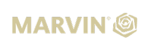 Marvin-logo-gold